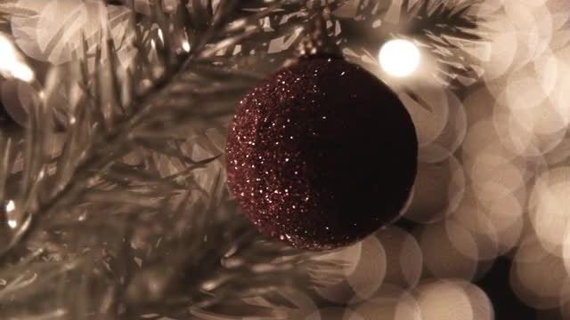 Christmas Ball On Tree: Stock Video