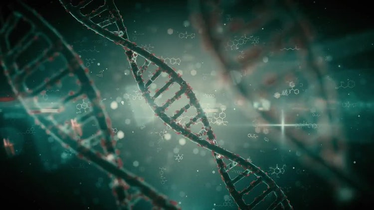 Pack Backgrounds Futuristic DNA Strands Looped: Motion Graphics