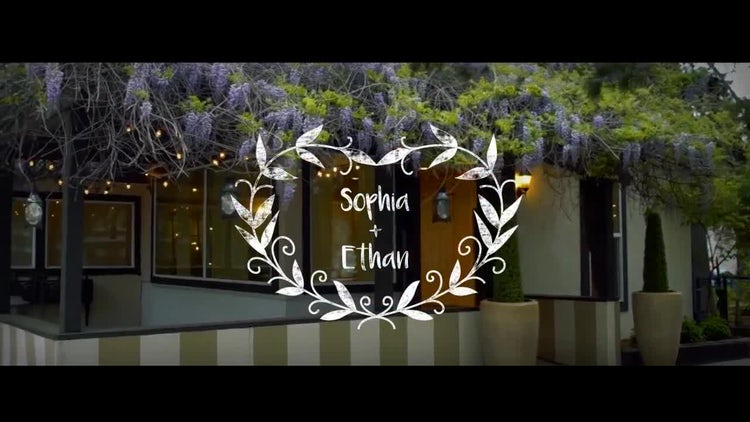 14 Wedding Titles: After Effects Templates