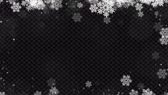 Christmas Snowflakes Sparkling : Motion Graphics
