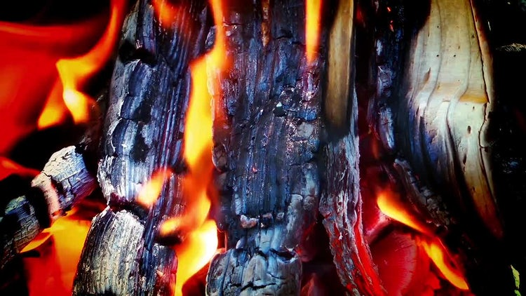Wood and Coal Fire: Stock Video
