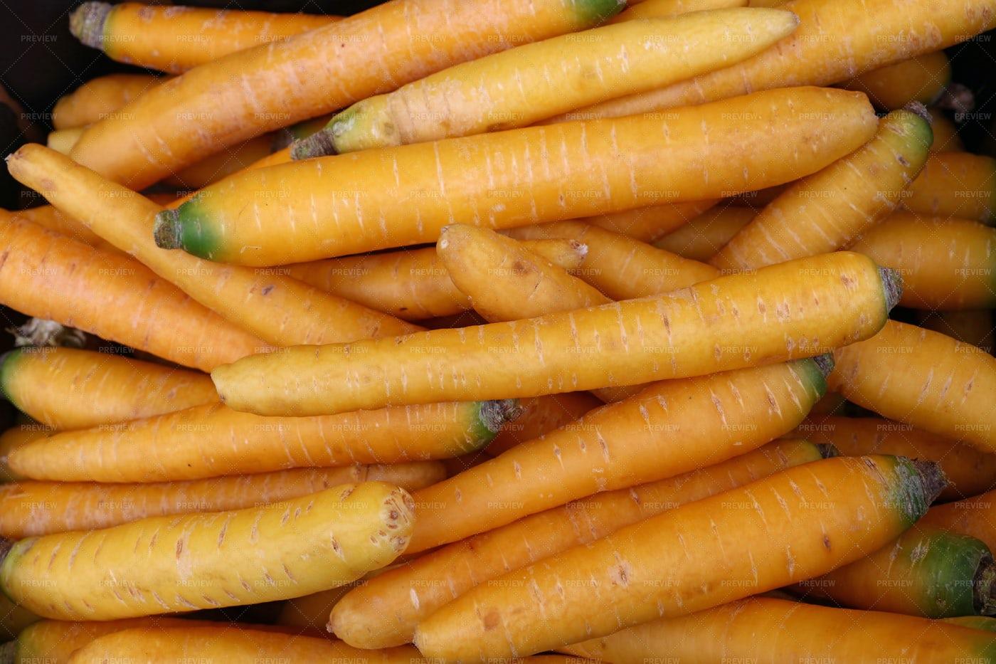 Spring Yellow Carrots: Stock Photos
