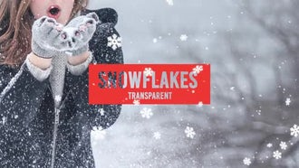 Snowflakes: Motion Graphics