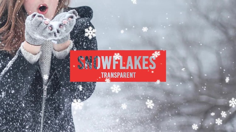 Snowflakes: Stock Motion Graphics