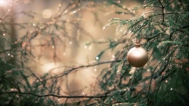 Christmas Ball: Stock Video