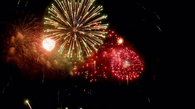 Firework: Stock Video