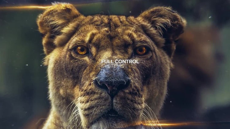Positive Opener: After Effects Templates