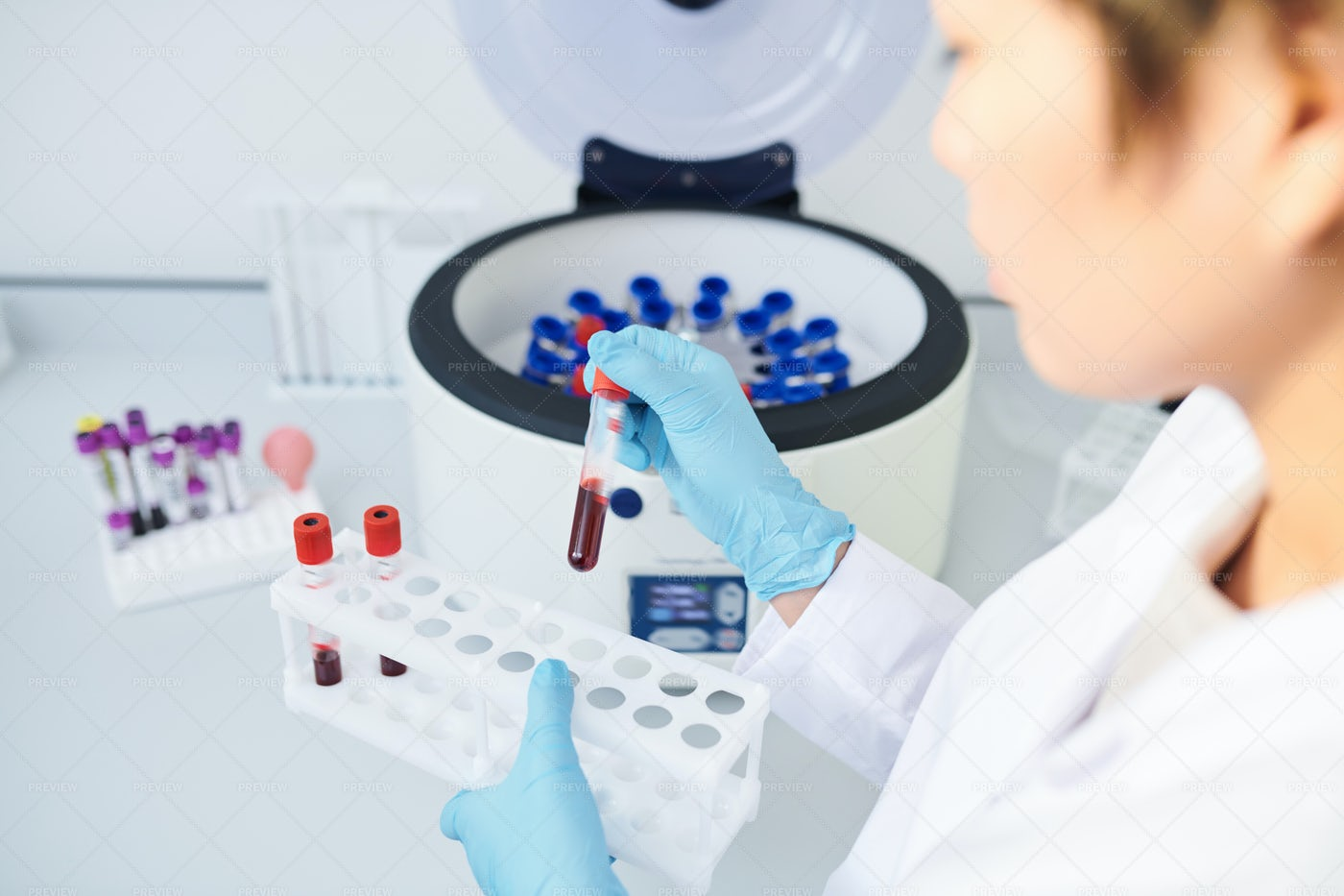 Preparing Blood Samples For...: Stock Photos