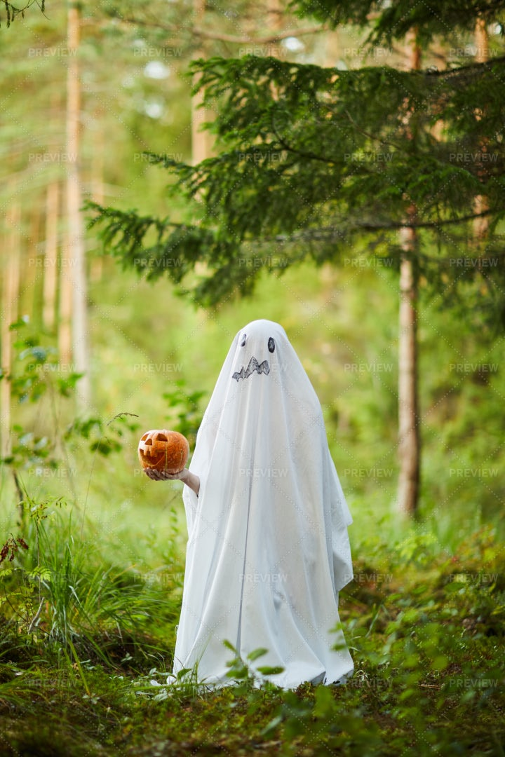 Ghost In Woods: Stock Photos