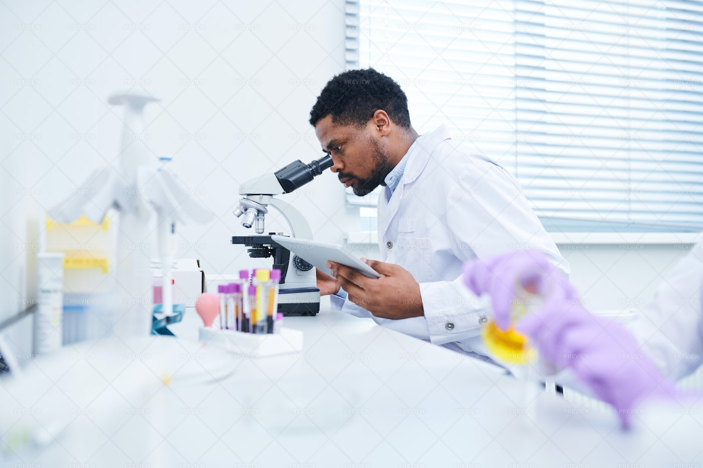 Concentrated Lab Technician Using...: Stock Photos