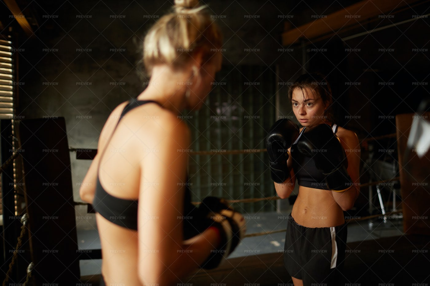 Two Young Women Boxing: Stock Photos
