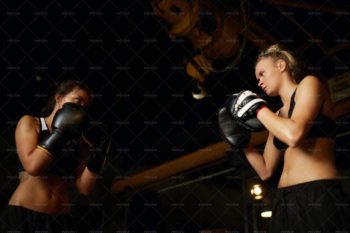 Women Boxing Low Angle: Stock Photos