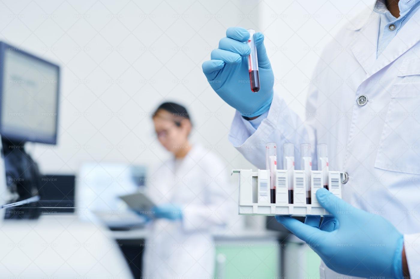 Preparing Medical Sample For Virus...: Stock Photos