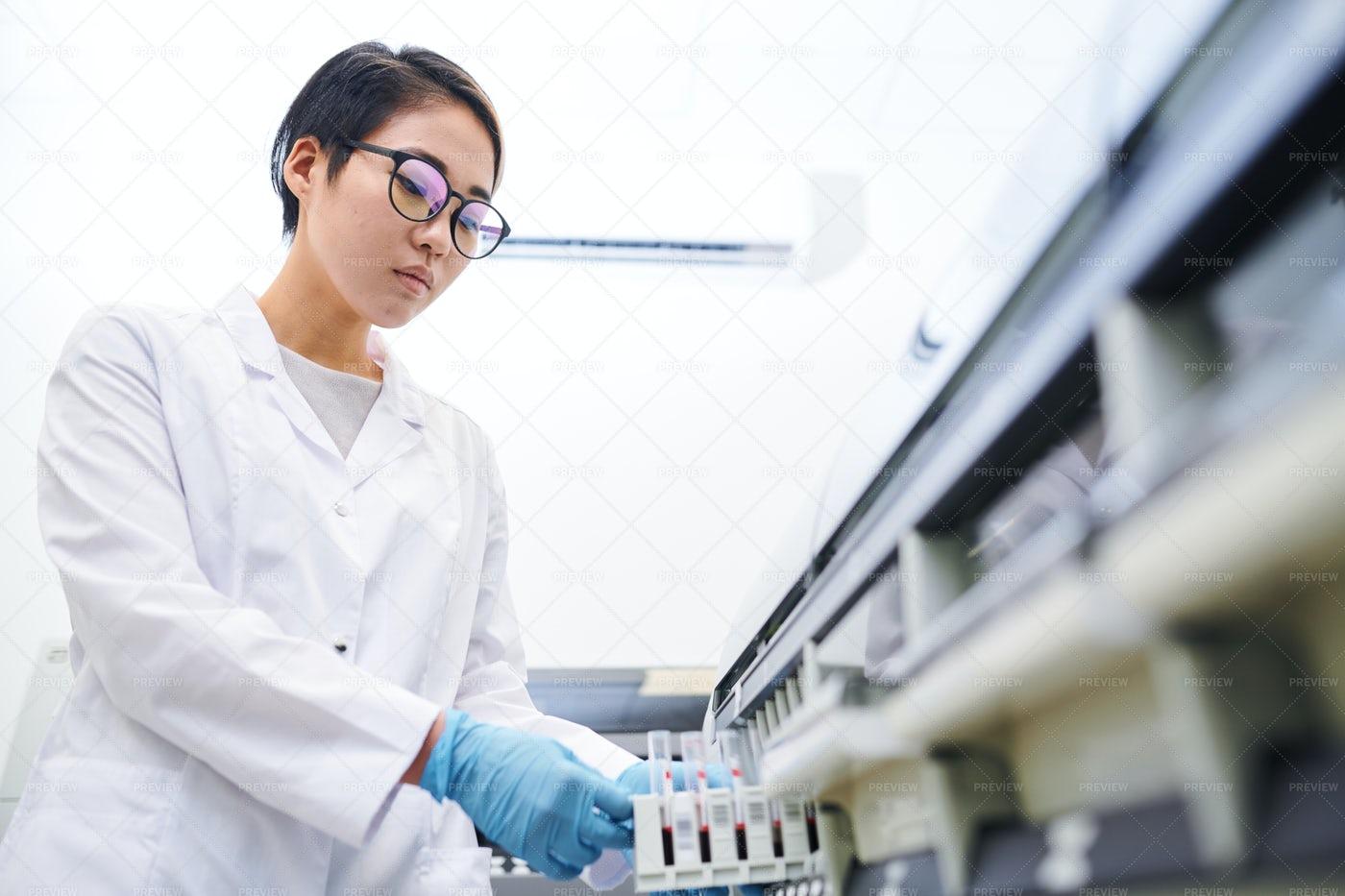 Asian Laboratory Employee Placing...: Stock Photos