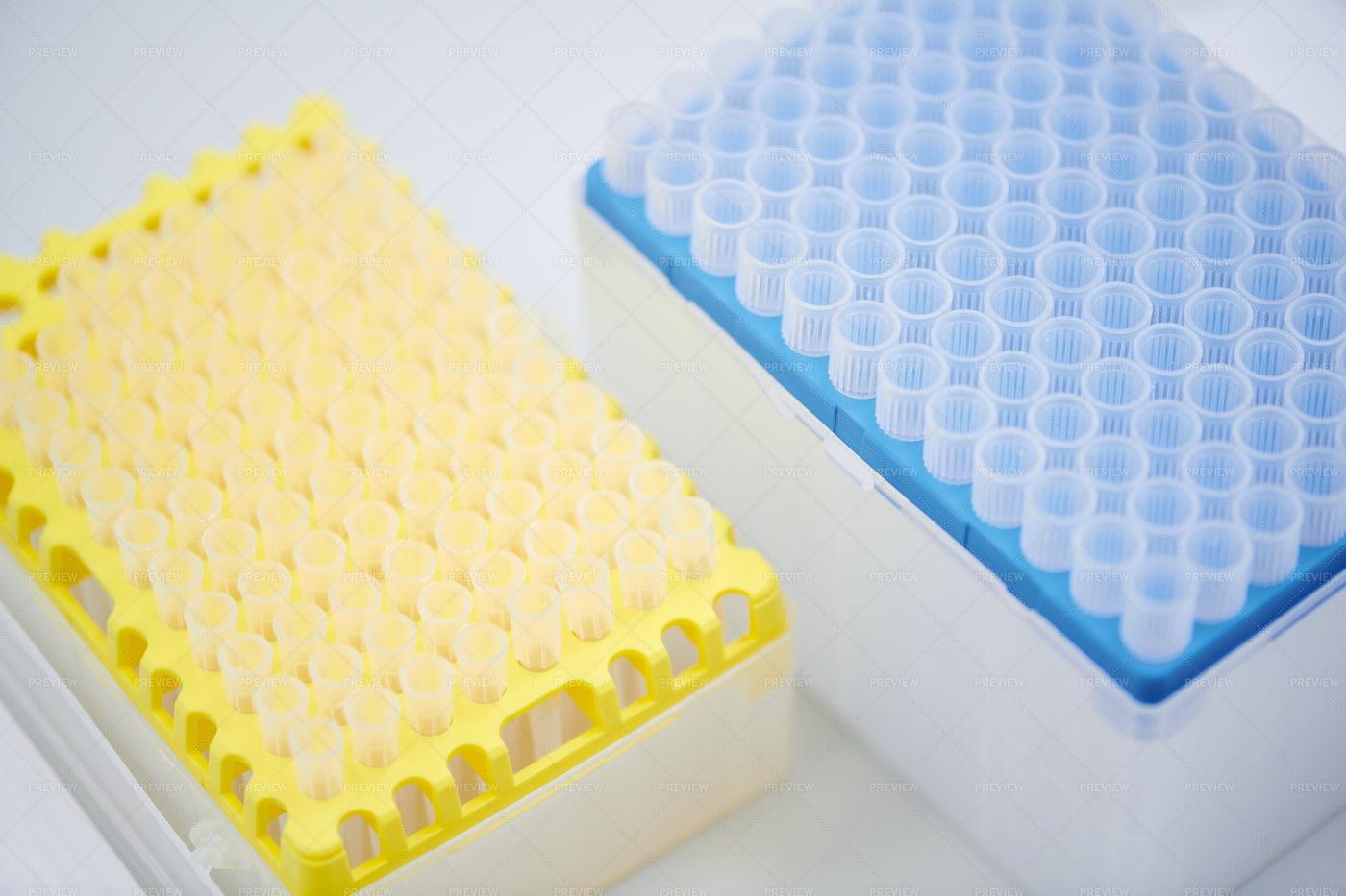Plastic Test Tube Rack: Stock Photos