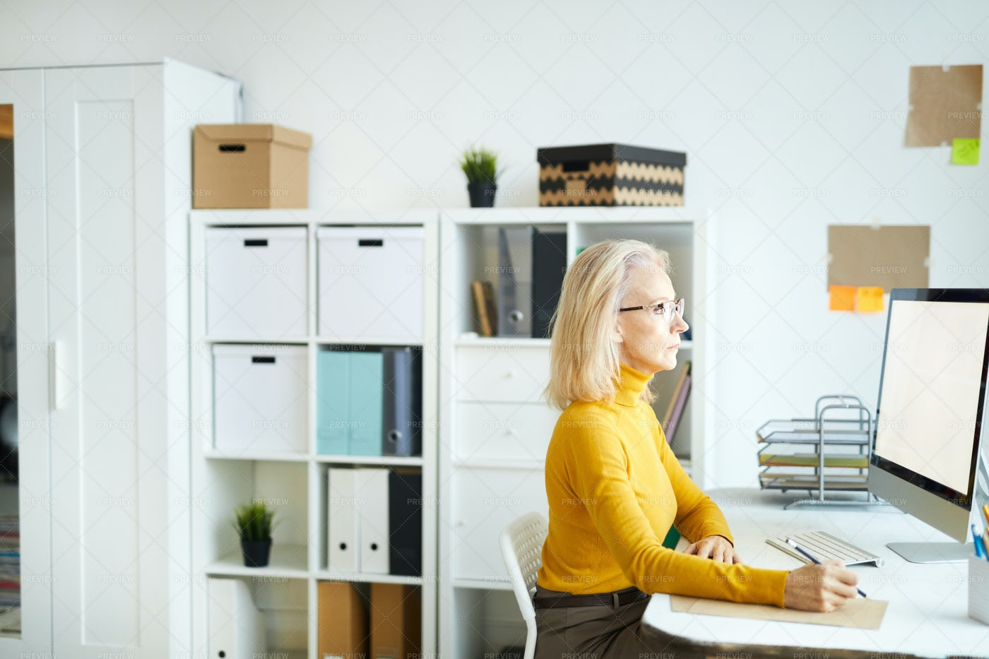 Mature Businesswoman Using Computer: Stock Photos