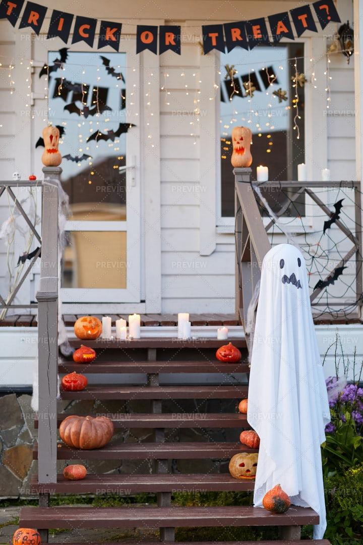Halloween Decorations: Stock Photos