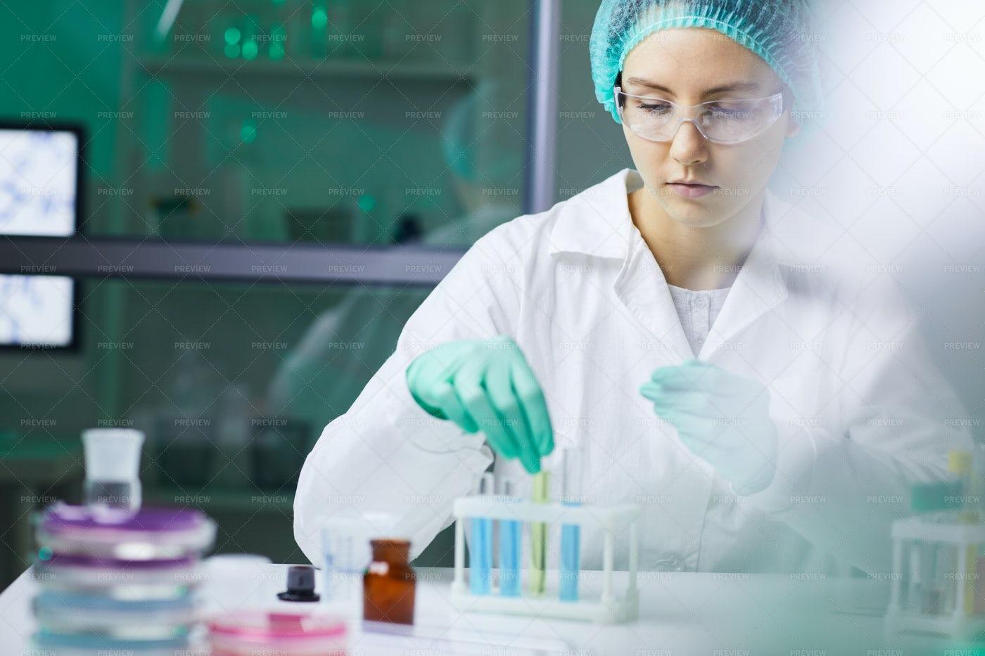 Scientist In Laboratory: Stock Photos