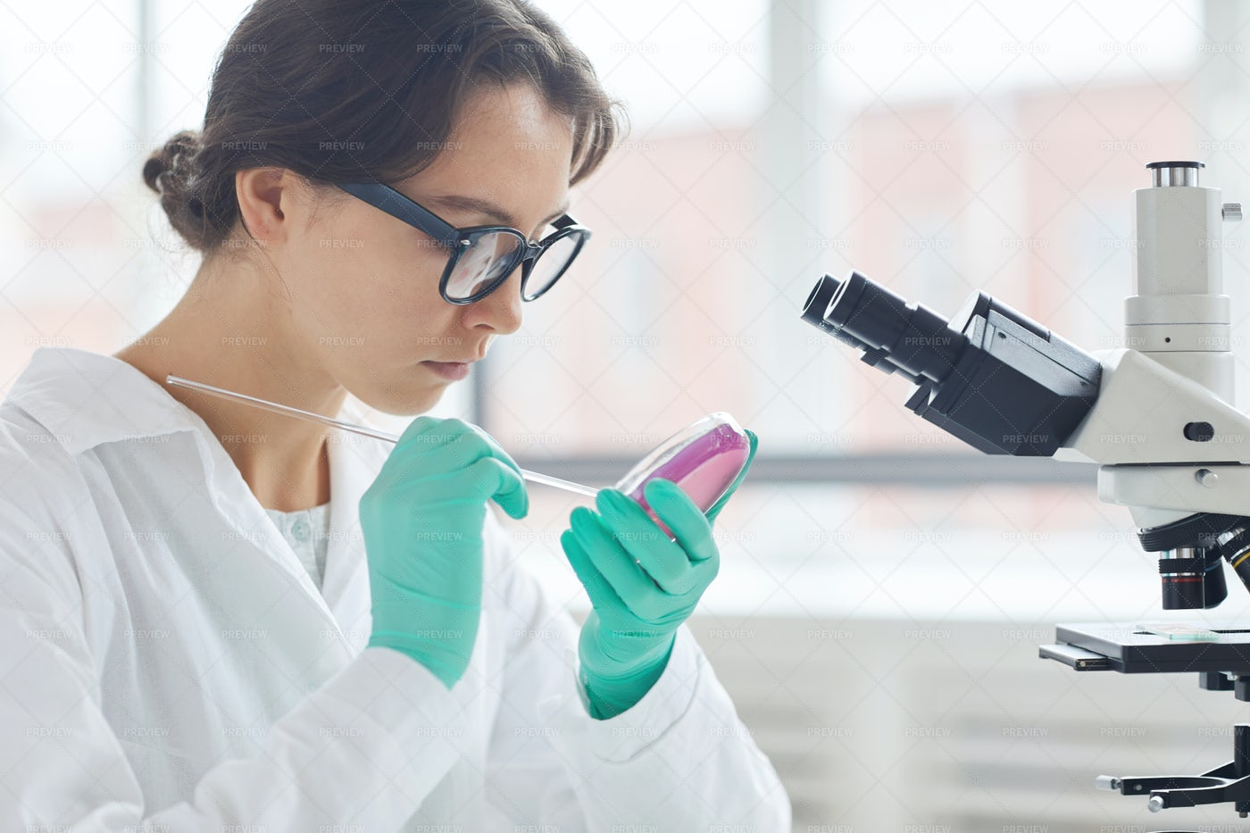 Young Woman Testing Bacterial...: Stock Photos