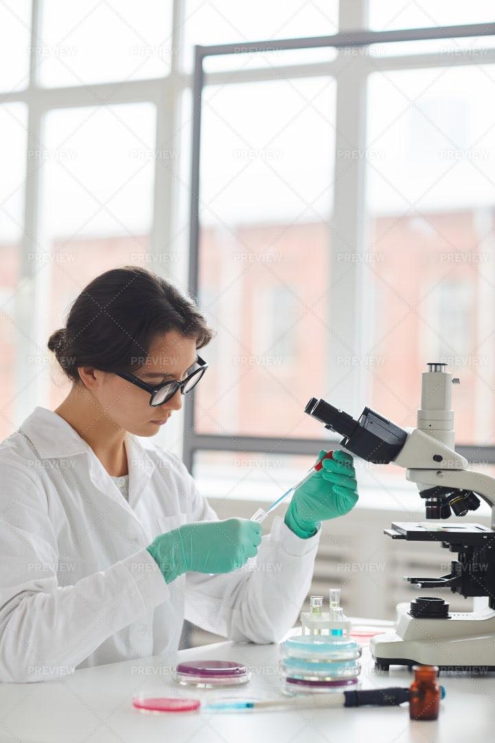 Beautiful Female Scientist Side...: Stock Photos