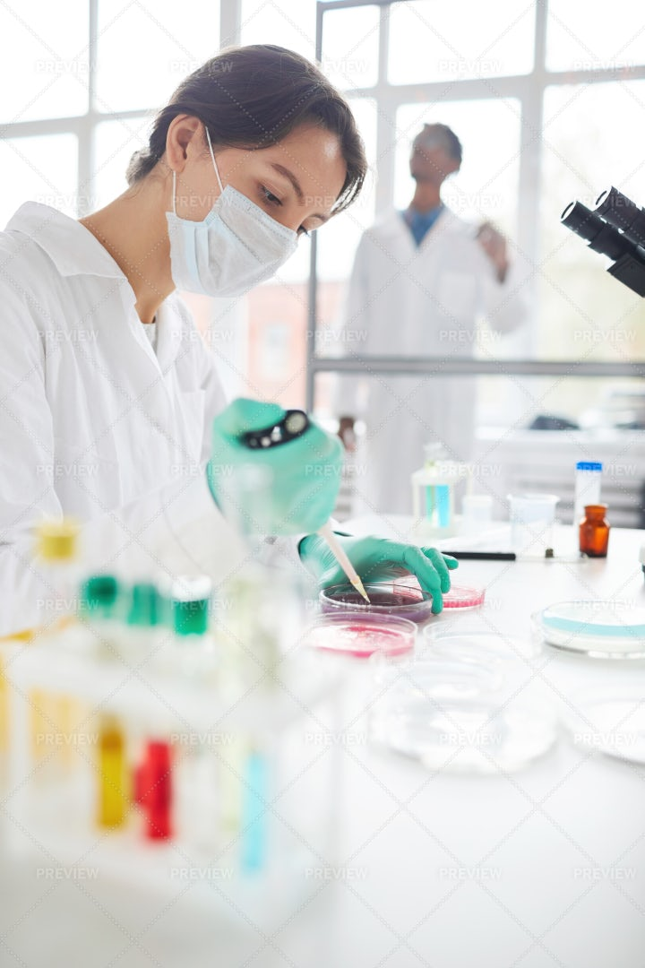 Student Working In Laboratory: Stock Photos