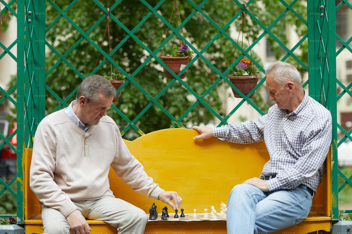 Playing Chess In Garden: Stock Photos