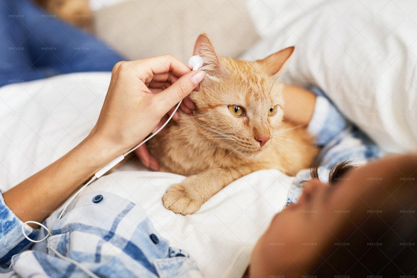Cat Listening To Music: Stock Photos
