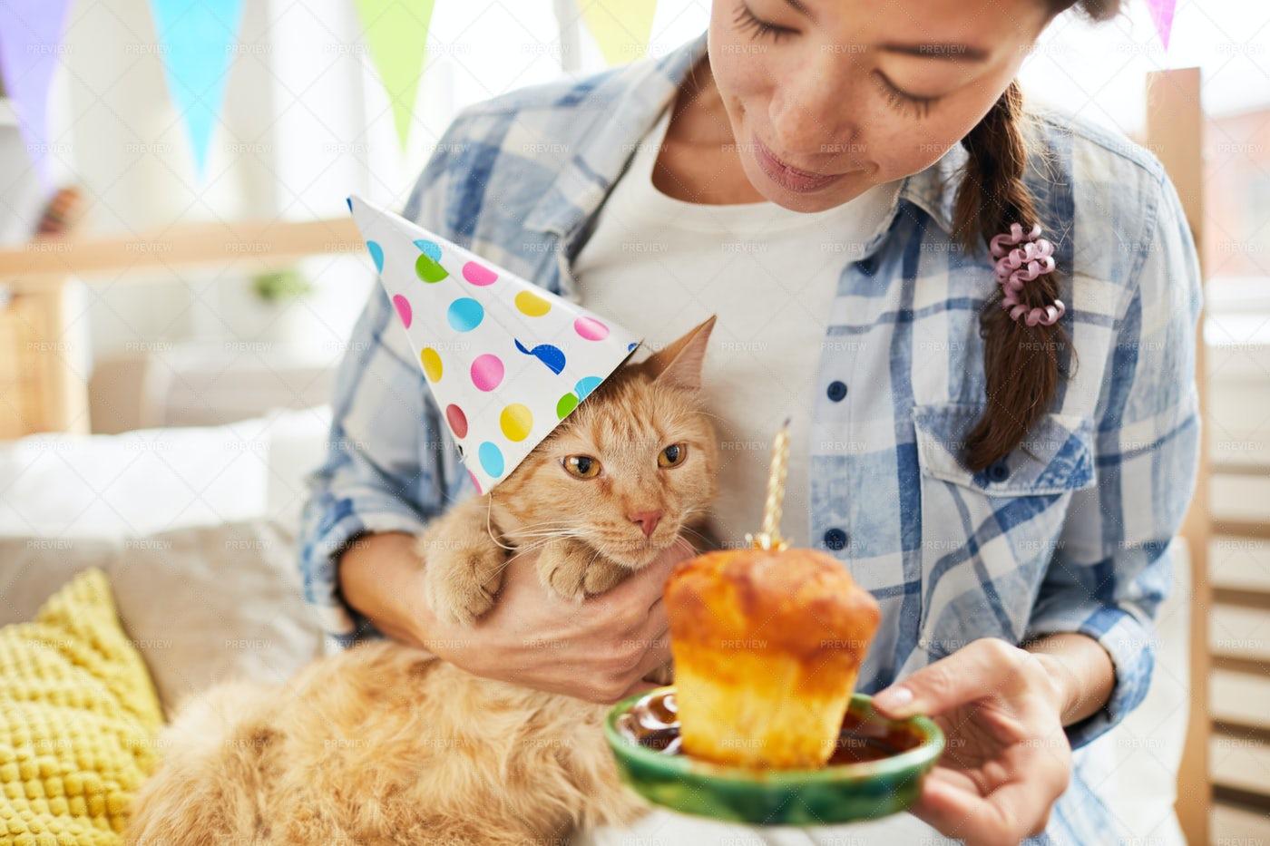 Happy Birthday To Cat: Stock Photos