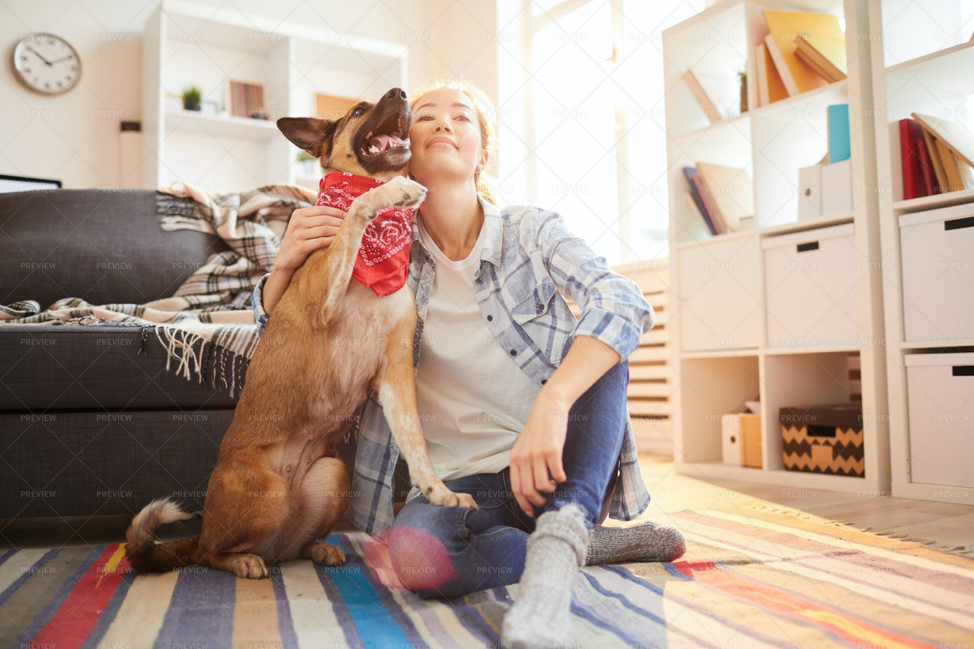Woman With Shepherd Dog: Stock Photos