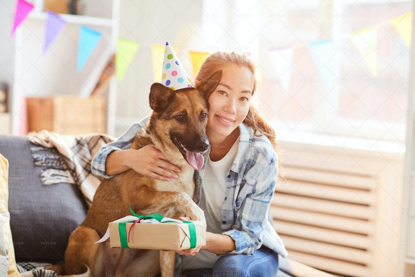 Celebrating Dog Birthday: Stock Photos