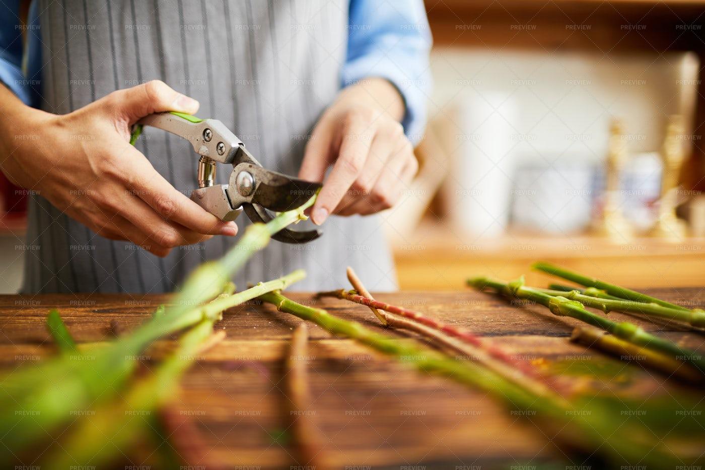 Florist Cutting Stems Closeup: Stock Photos