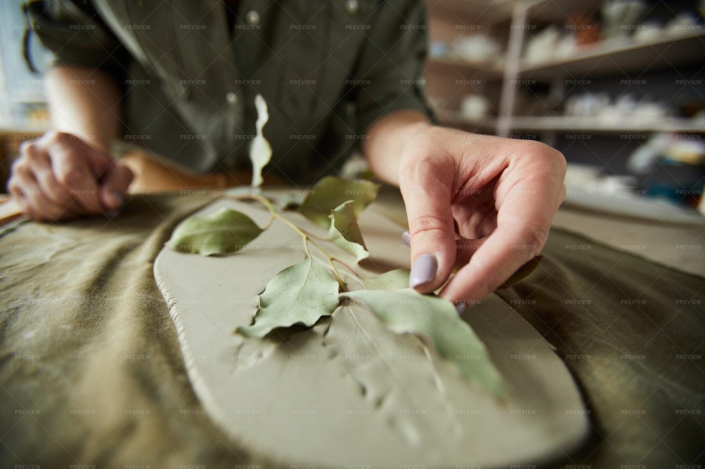 Plant Print In Ceramics: Stock Photos