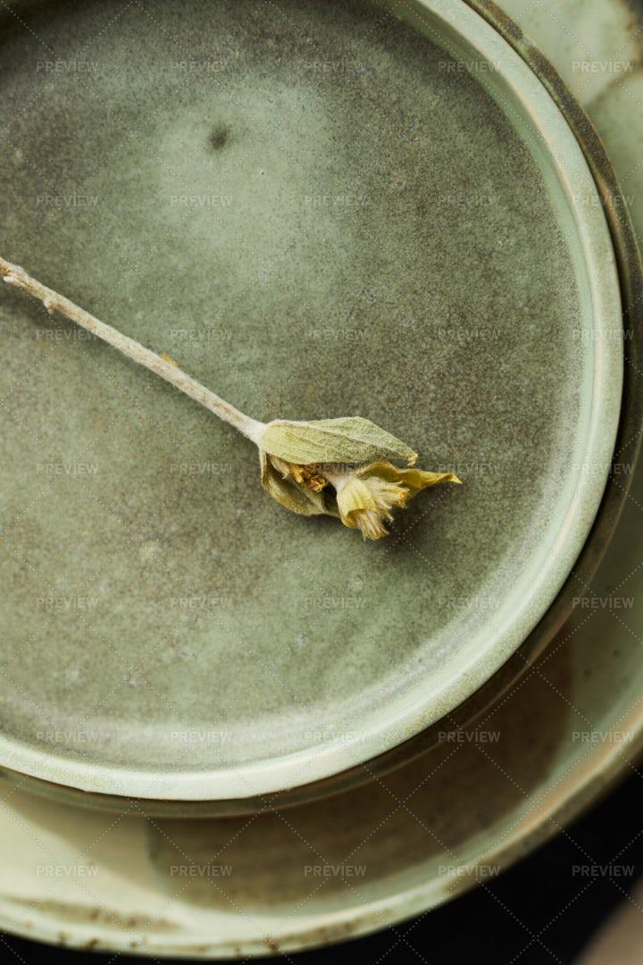 Beautiful Ceramics: Stock Photos