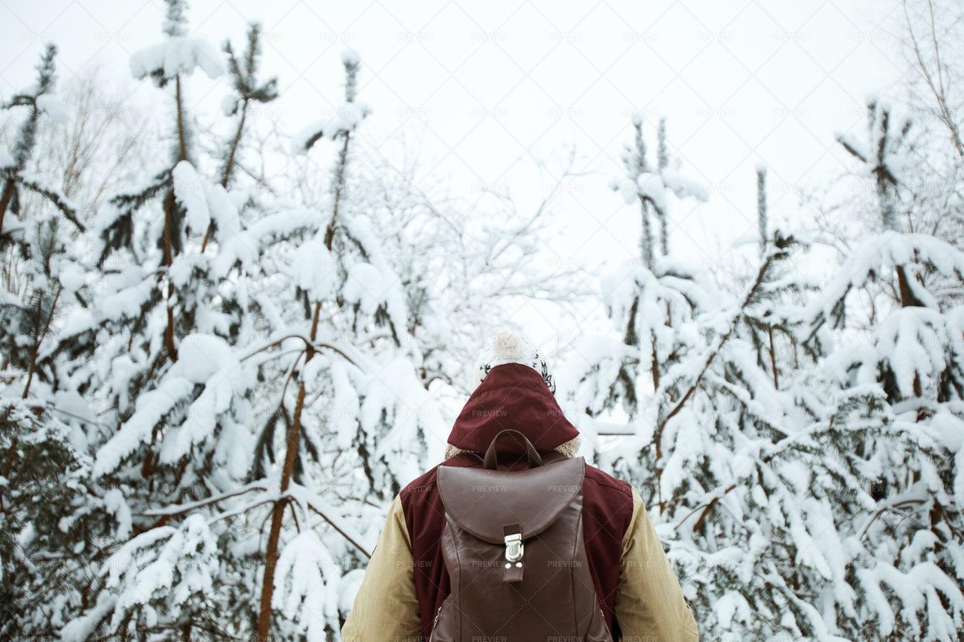 Winter Adventure: Stock Photos