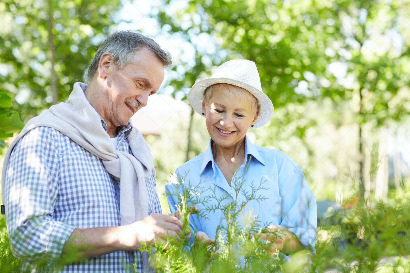 Senior Couple Inspecting Plants: Stock Photos