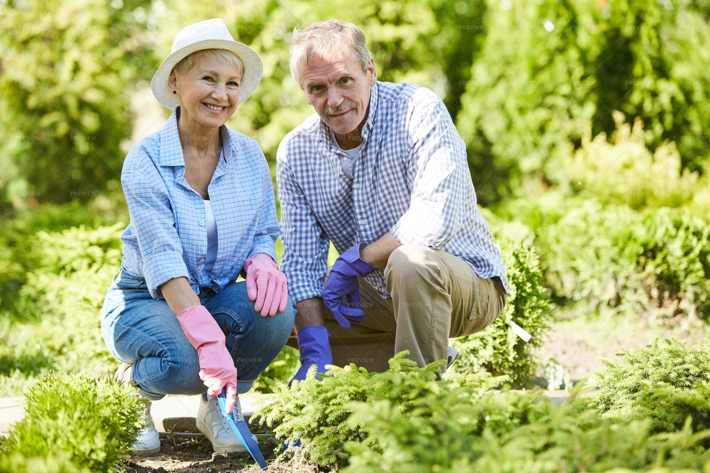 Senior Couple Gardening Together: Stock Photos