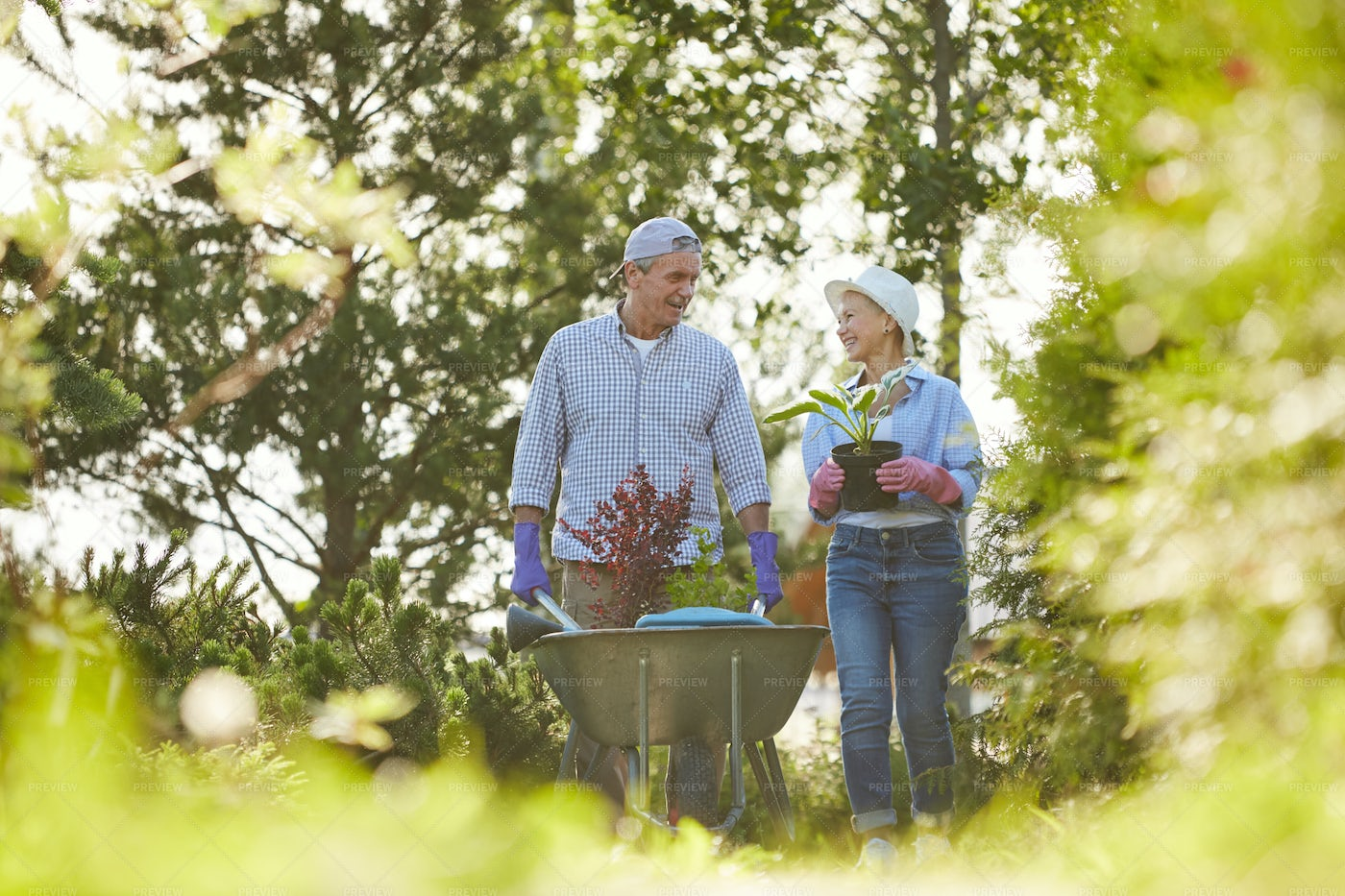 Couple Of Farmers In Garden: Stock Photos