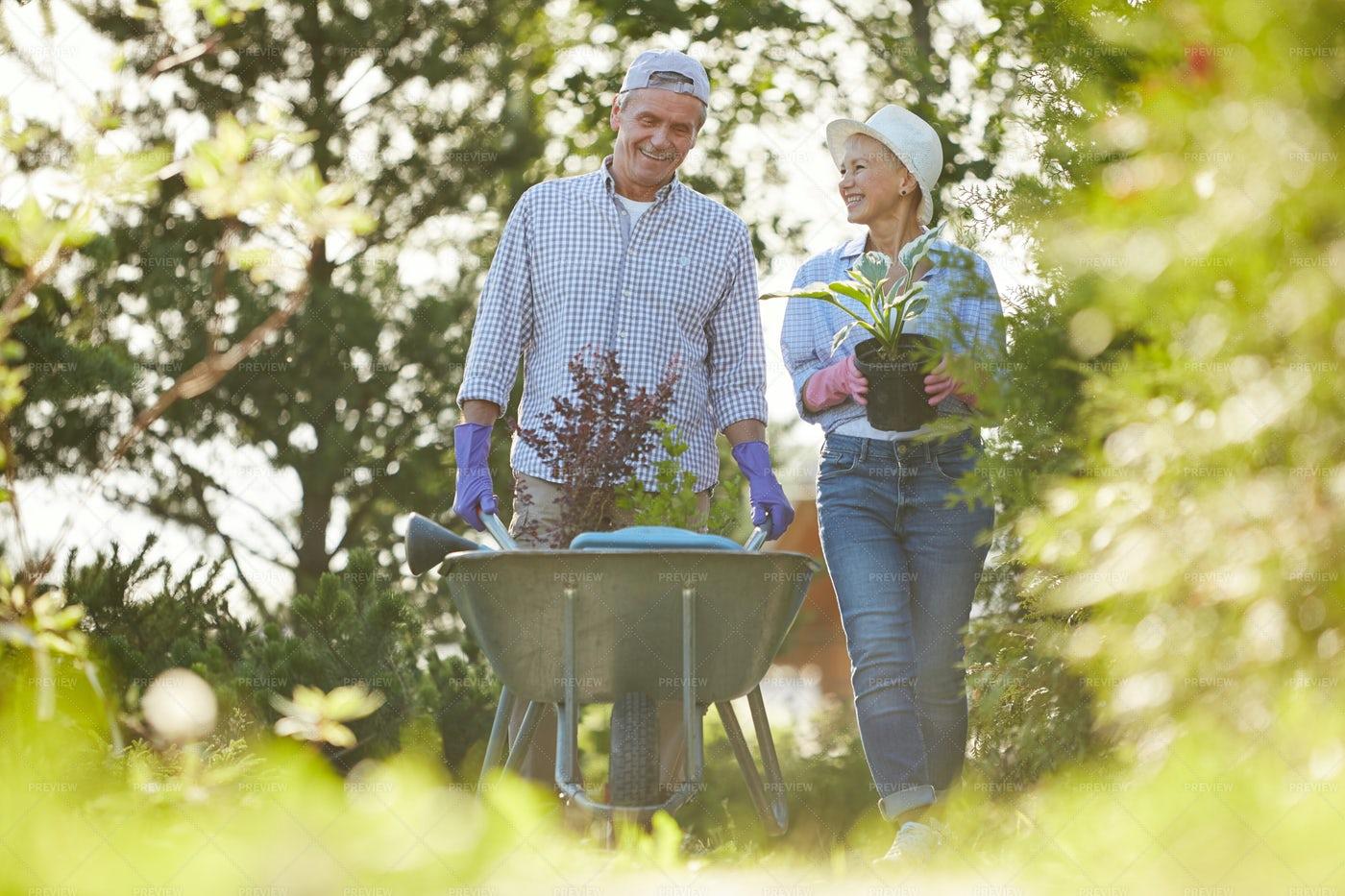 Couple Of Senior Farmers In Garden: Stock Photos