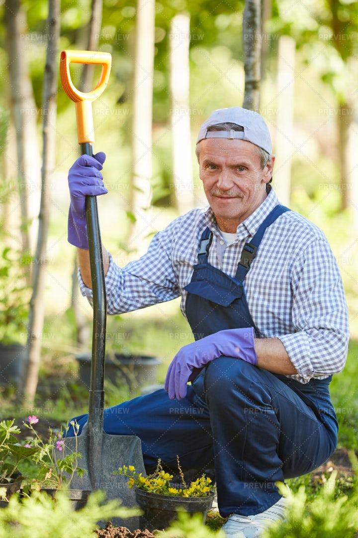 Smiling Man Working In Garden: Stock Photos