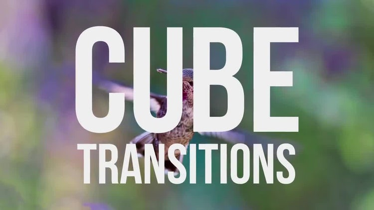 Cube Transitions : After Effects Templates