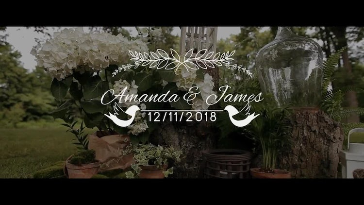 15 Wedding Titles: After Effects Templates