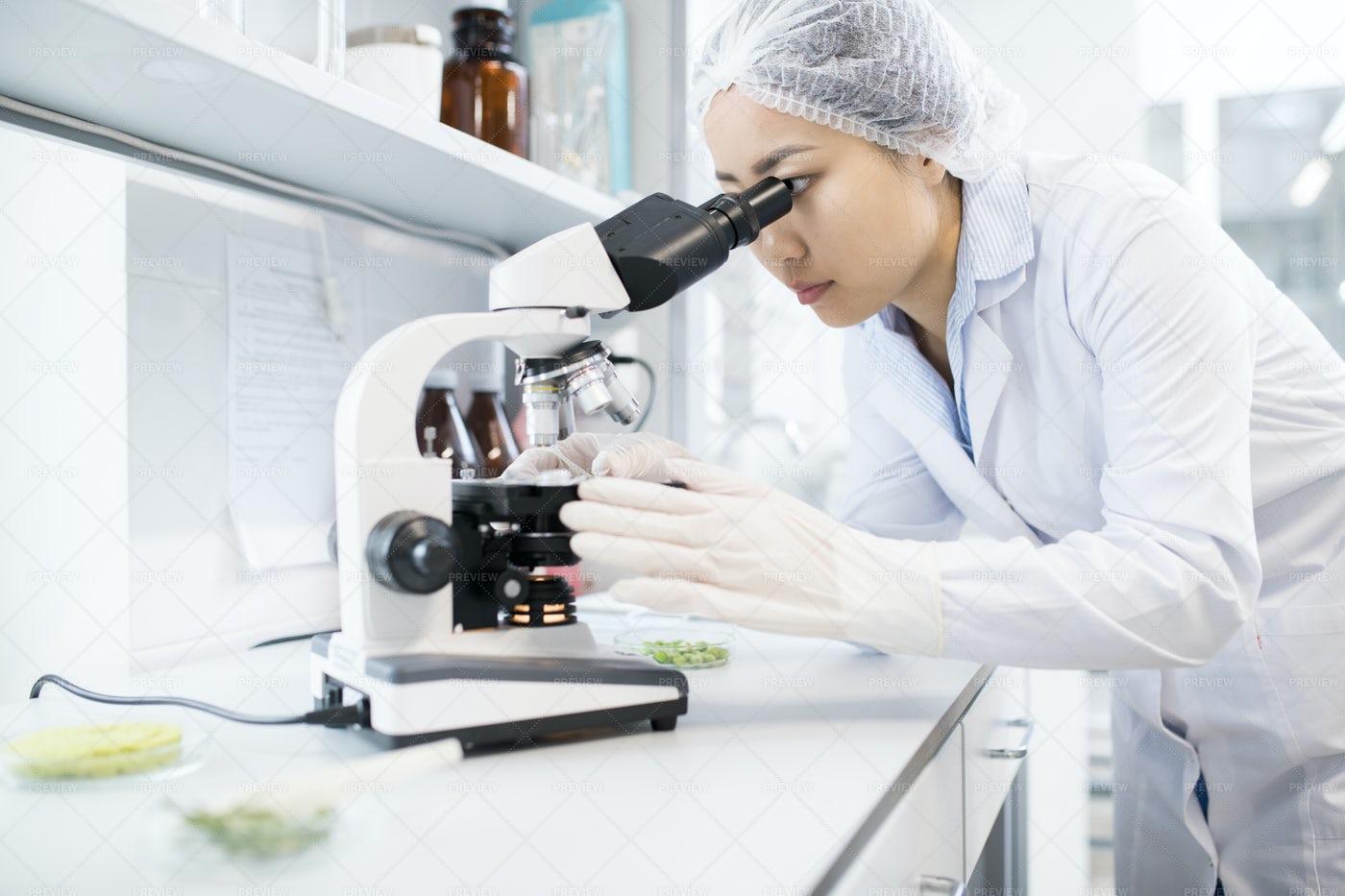 Asian Female Scientist Using...: Stock Photos