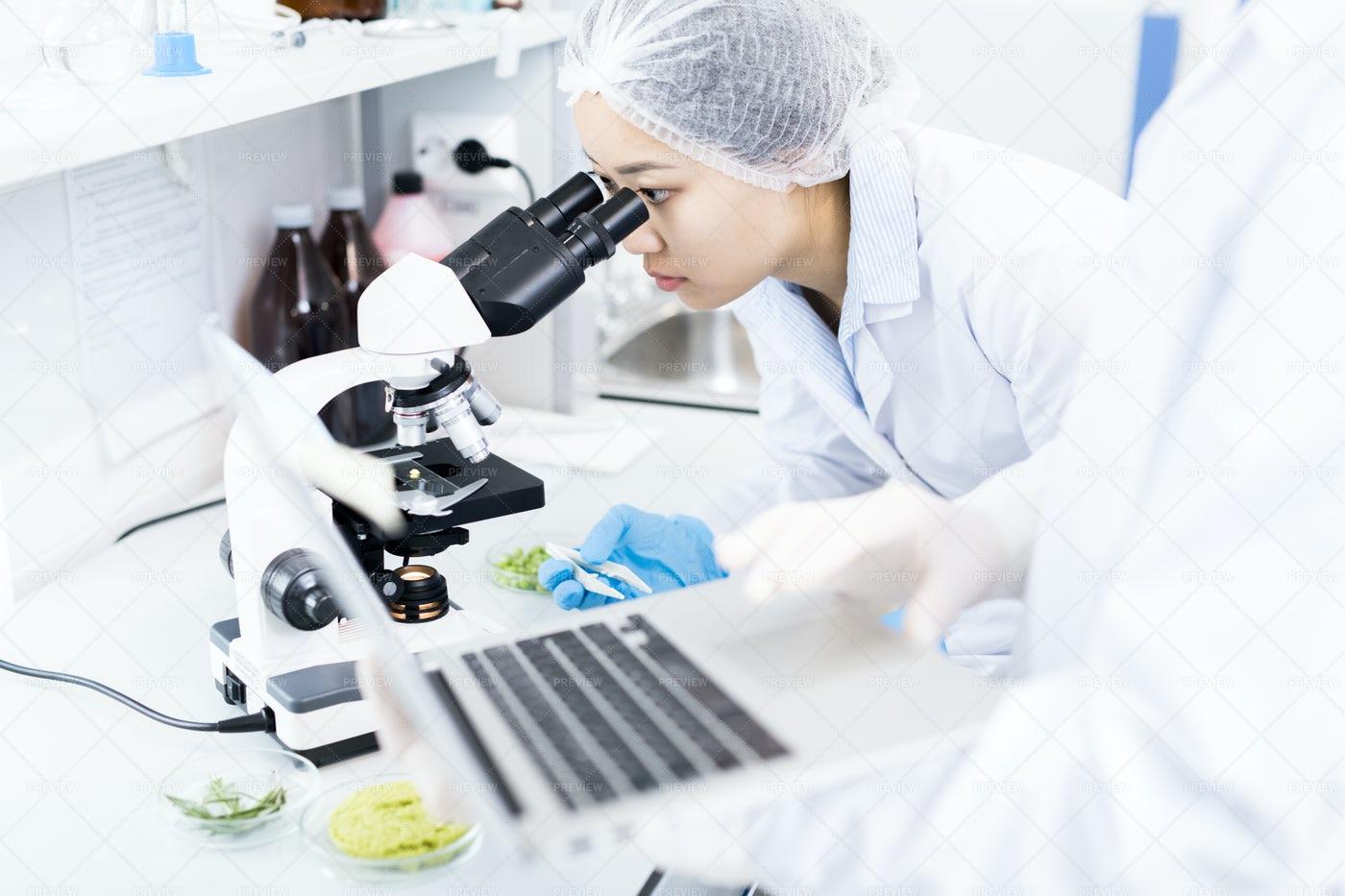 Asian Scientist Using Microscope: Stock Photos