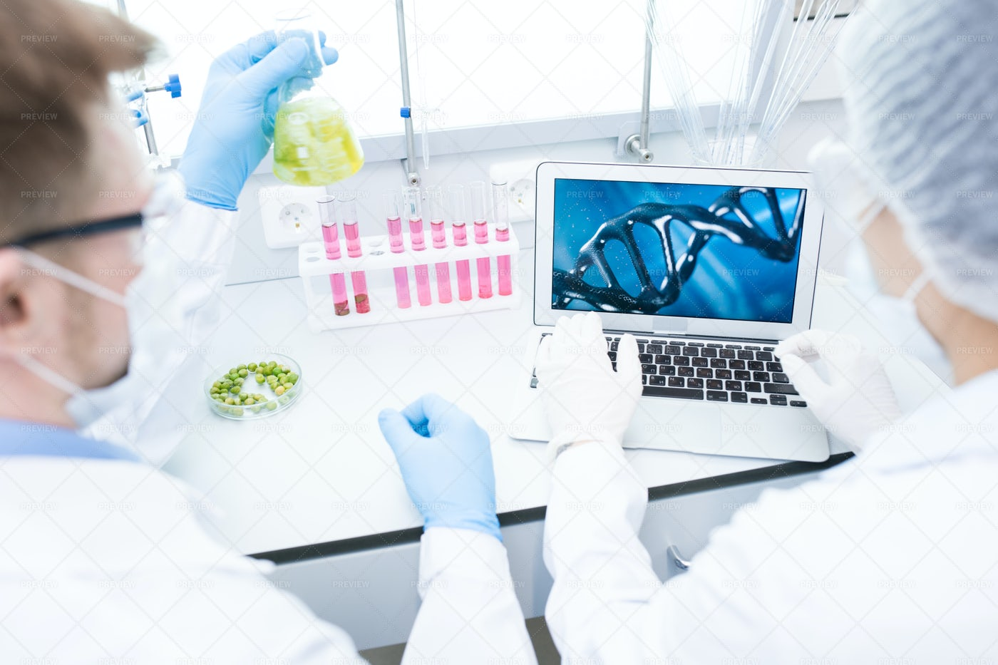 Two Scientists Doing Research: Stock Photos