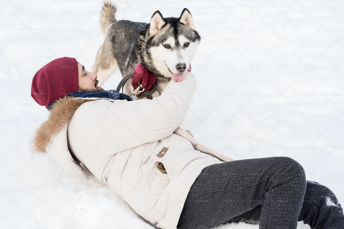 Carefree Man Playing With Dog In...: Stock Photos