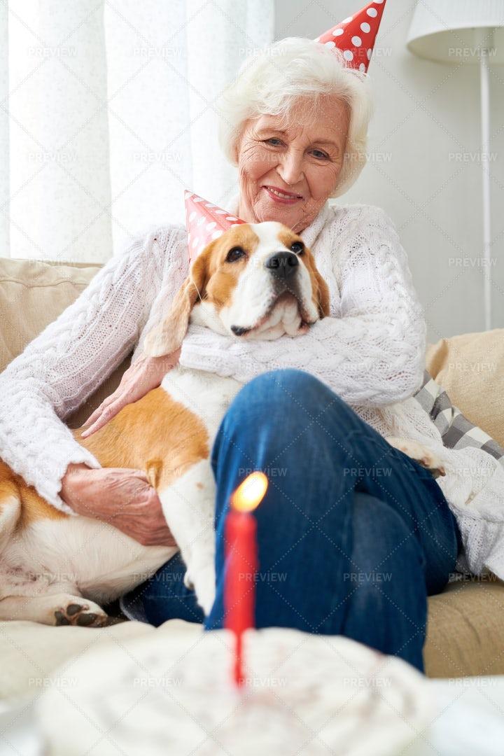 First Birthday Of Favorite Dog: Stock Photos