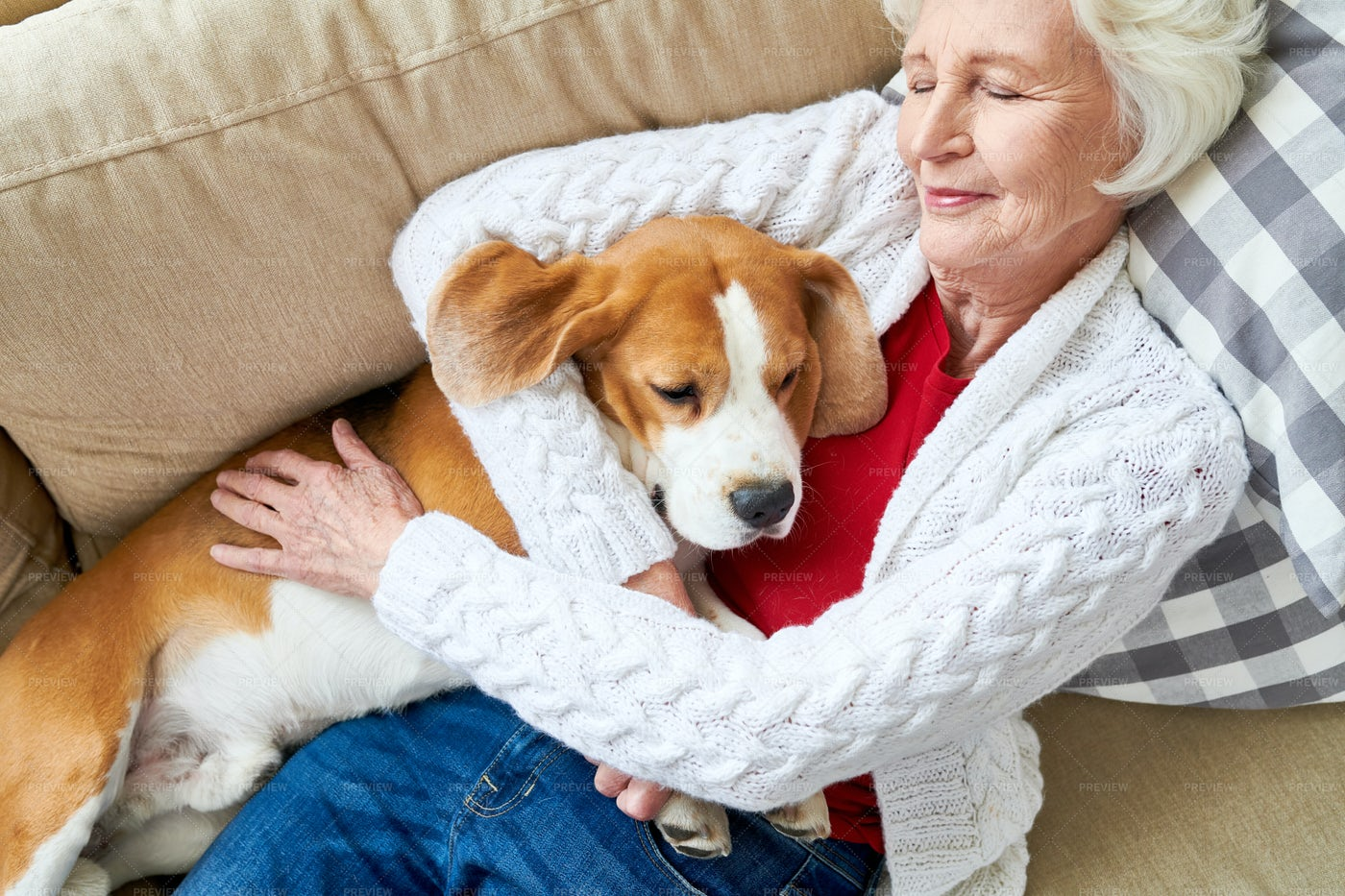 Pleased Owner Sleeping With Dog: Stock Photos