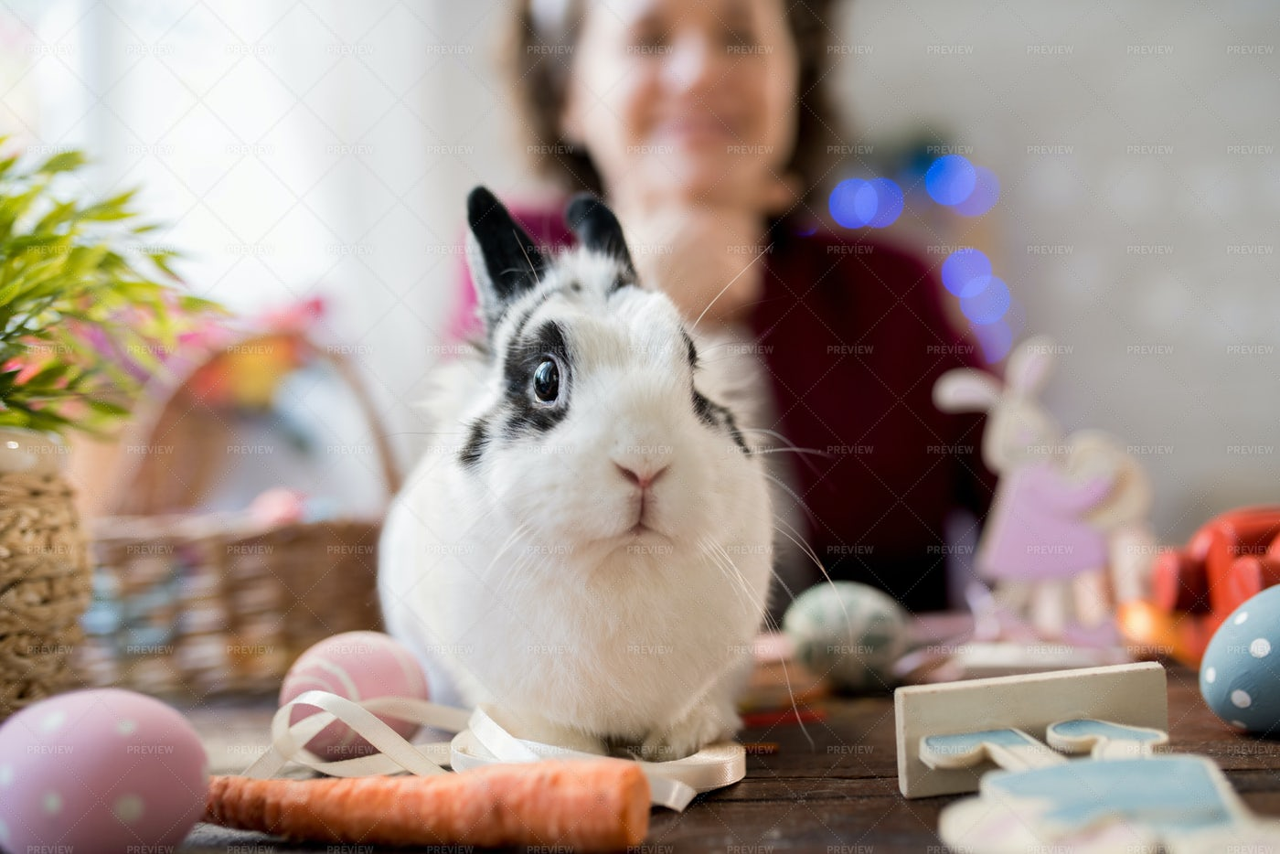 Black And White Easter Bunny: Stock Photos