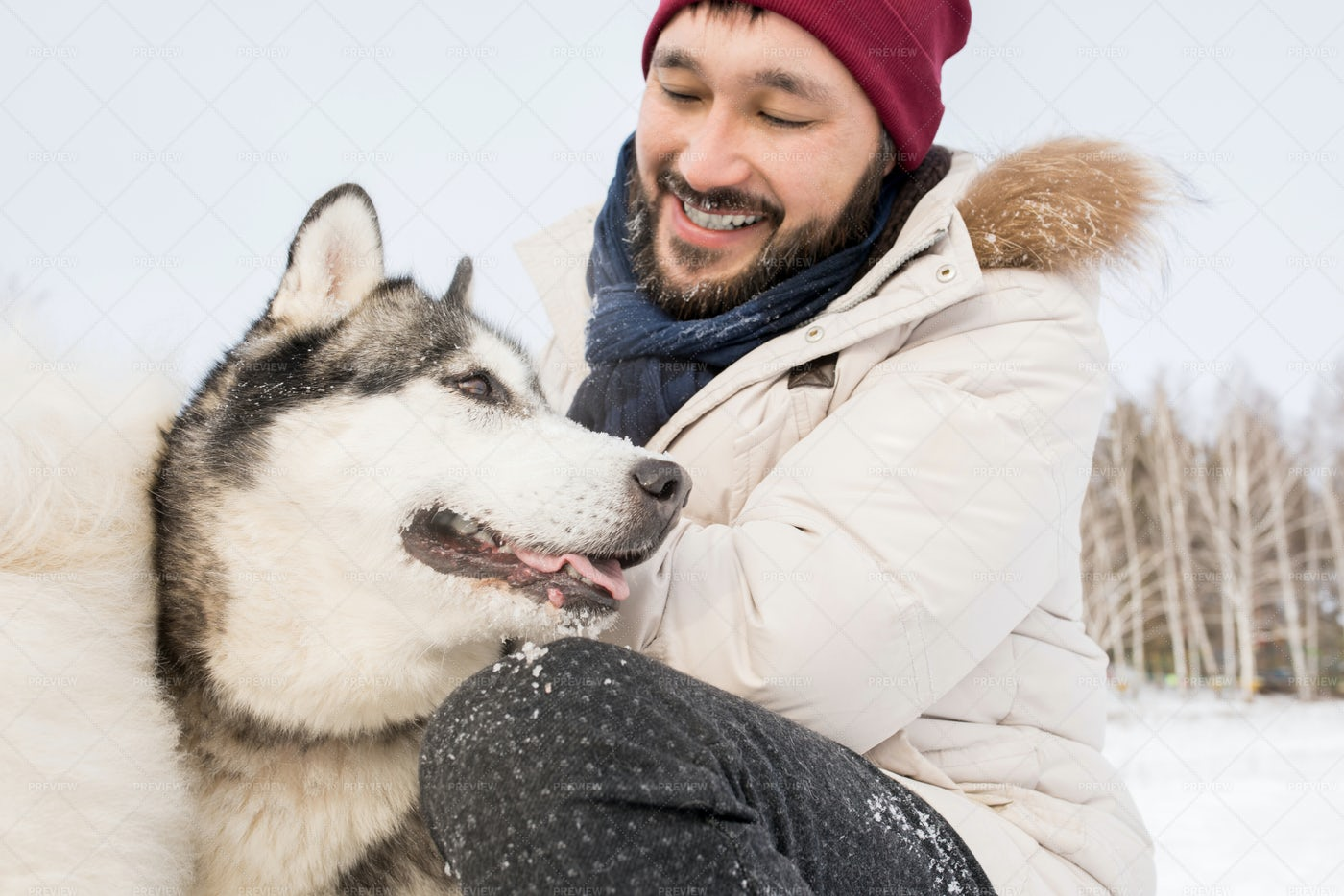 Asian Man Playing With Husky Dog: Stock Photos