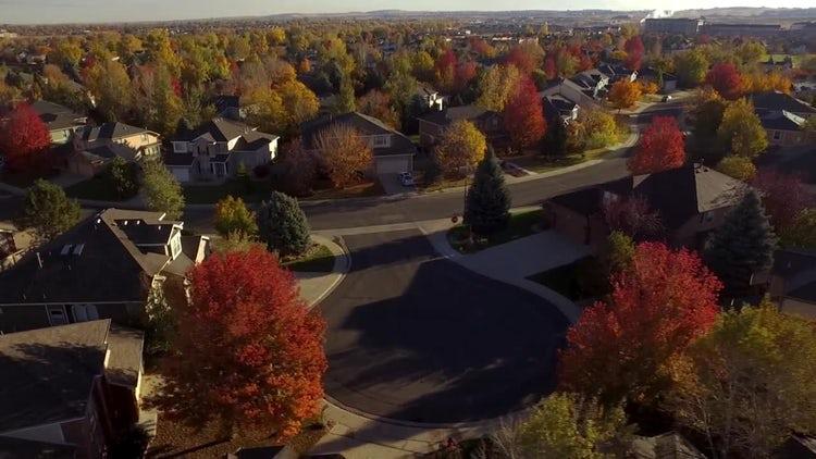 Fall Neighborhood: Stock Video